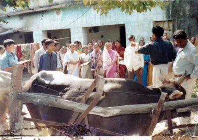 2002---CYSD--KAAFI---Biswakalyan
