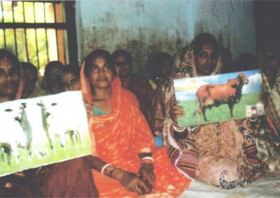 2012---Gir-Odisha---Dairying-Shakti