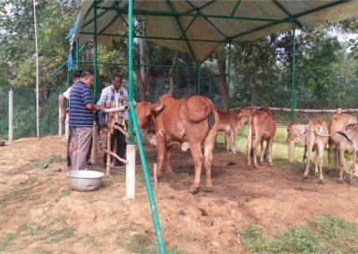 2017-Dr-Ranjit-inspecting-C