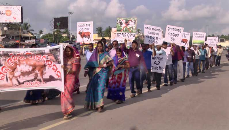 2017-Protest-march-at-PURI-(2)