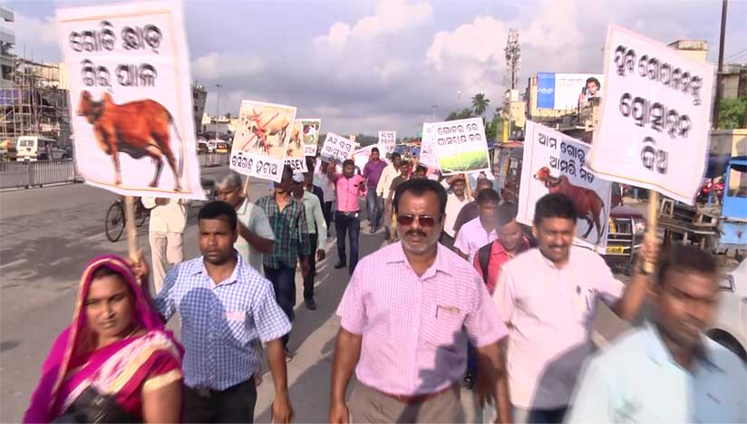 2017-Protest-march-at-Puri
